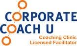 queenstown coaching business